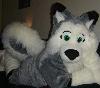 wolfushusky userpic