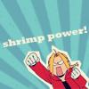 shrimp power!