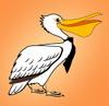 пеликан с моего сайта