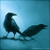 ma_raven userpic