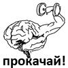 качок, мозг