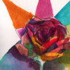 rose -watercolour-