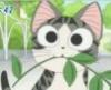 the_magic_cat userpic