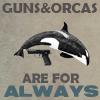 Wellspring 'verse Guns/Orcas icon