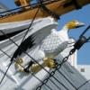 HMS_Gannet