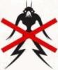 kyoureshi userpic