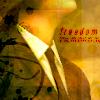 freedomonwings