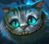 holy_cat