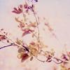 ilovelantern userpic