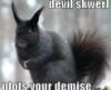 devil skwerl