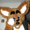 Rudo fursuit