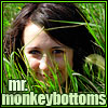 mr. monkeybottoms