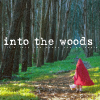 into the woods by songstressicons