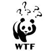 Max Kaehn: WTF Panda