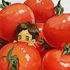 cptnsuz: tomatoes aphSpain