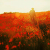beaked: ○ fields of red