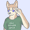 Sic Transit Canis - icon by Tanukisan