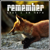 Fox - Remember that I'm here