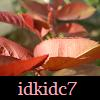 idkidc7 userpic