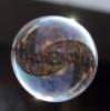 пузырик