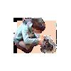 Pet Chun