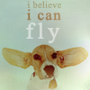 ¤Dog; Can fly¤