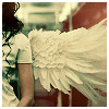 dana_green: angelwings