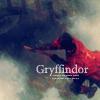 Movie--HP--Gryffindor Quidditch