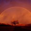 No Rain, No Rainbow: A Fanficiton Archive