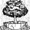 porridge_tree userpic