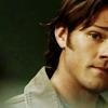 Sammy Wants To Be LOOOOOVED - Sam