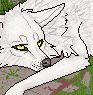 kaldinwolf userpic