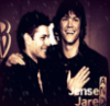 Irasshai-Mase, to Suky-chan's Live Journal: padackles