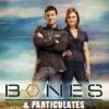 bonesparticulat