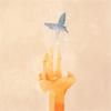 xxxholic butterfly