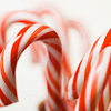 Christmas / candy canes