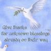 Kate: Faith:  Give Thanks