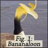 Bananaloon