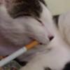 Bitsy Smoking 2