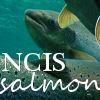NCIS: LA- Sam/Callen