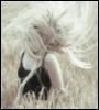 aqvarellka userpic