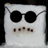 snowman в очках