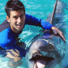 nole goes to seaworld