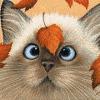 autumn_cat