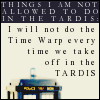 Hiding in plain sight: DW-TARDIS_timewarp