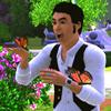 Sally: jmayersimbutterflies