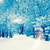 x snow