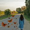 butterfly's road