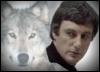 Avon Wolf 2