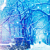 Sina: winter wonderland